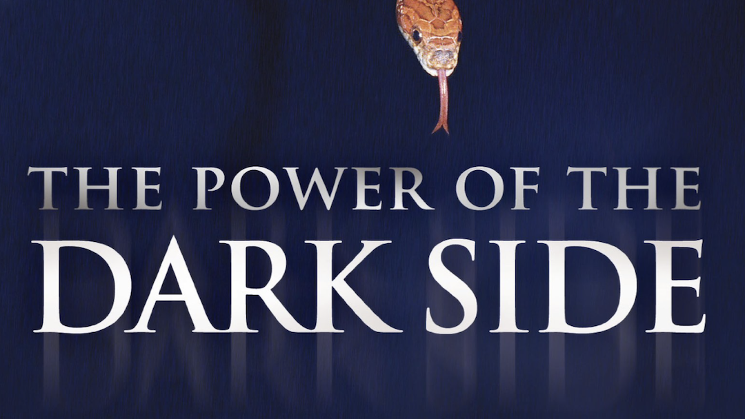 [Book Review] The Power of the Dark Side, by Pamela Jaye Smith